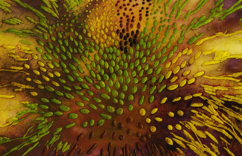 Echinacea - 1900mm x 700mm - SOLD